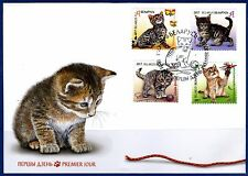 2017. Belarus. CATS. Children philately. Kittens. FDC