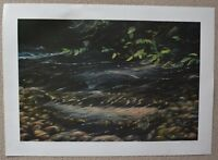 Bruce Muir Spawning Salmon Signed Limited Ed Lithograph Print