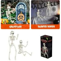 2x Halloween Prop Human Skeleton Full Size Skull Hand Life Body Anatomy Decor US