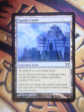 Eiganjo's Castle    Mtg VO EX