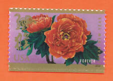 US Lunar New Year: Year of the Monkey Stamp a SINGLE ~Die Cut/Regular~ 2016