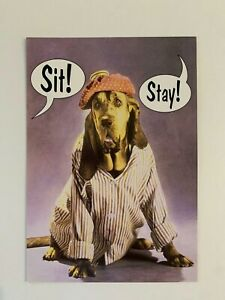 LOT 6 NEW Leanin' Tree GET WELL Dog in Pajamas GWT12191