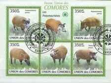 Timbres Animaux Comores 1701/5 o année 2009 lot 23400 - cote : 12,50 €