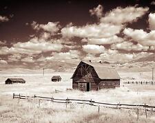 FINE ART LANDSCAPE PHOTO ABANDONED FARM OLD BARN 8x10  #21931
