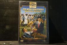 Die Marx Brothers - Blühender Blödsinn (DVD, still sealed)
