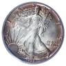 1989 $1 Silver Eagle PCGS MS-67 ( Beautifully Toned ) ASE Coin Bullion