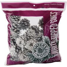Winter Woods 44041 White Tipped Red Pinecones 7oz New
