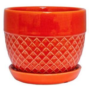 Trendspot Planter Pot Plant Indoor Outdoor Garden Coral Ceramic Acorn 6 inch New