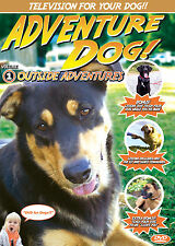 Adventure DOG DVD - Television for DOGS!