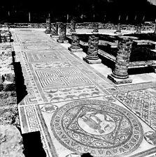 PORTUGAL c. 1960 - Mosaïques Conimbriga - Négatif 6 x 6 - Por 242