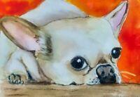 Chihuahua ACEO- Original Painting