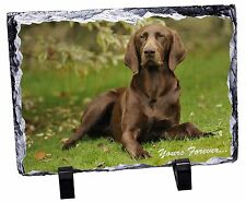 Brown German Pointer 'Yours Forever' Photo Slate Christmas Gift Orna, AD-GSP1ySL