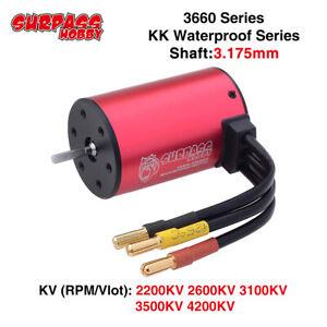 SURPASSHOBBY 3660 Series Brushless Motor 3.175mm for 1/10 GTR Traxxas HSP RC Car