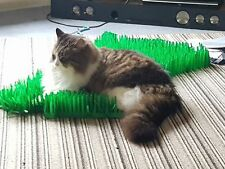 3 x Tissue Paper Grass Mats for cat or kitten toy FAST DELIVERY pet toys.