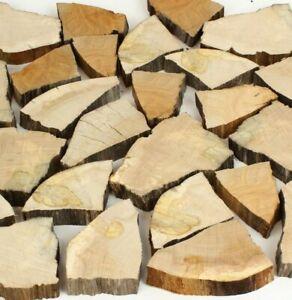 25 Holzscheite Holzscheiben Baumscheibe Deko Wanddekoration Floristik 4 - 11 cm