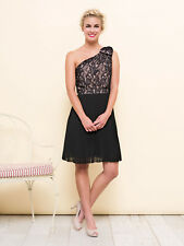 REVIEW Beautiful Floral Lace Pleated Skirt Dress Size 10 RRP $299, RARE!