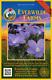 1 Oz Blue Flax Wildflower Seeds - Everwilde Farms Mylar Seed Packet