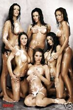 Poster NUTS-GIRLS - Shower Erotic ca60x90cm  NEU (56809)