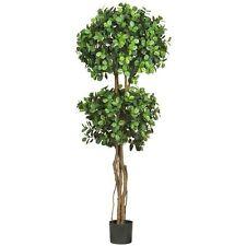 Decorative Artificial 5.5' Eucalyptus Double Ball Topiary Silk Tree Faux Plants