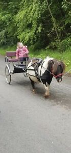 Cart And Harness To Fit Mini Shetland