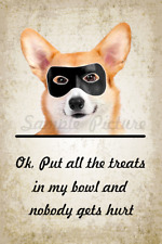 Funny Corgi Dog Bandit Poster Flex Fridge Magnet 2.75 X 4 Inches