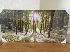 LARGE Green Woodlands Forest Wall Art Canvas Print (100 x 50 cm) *BRAND NEW*