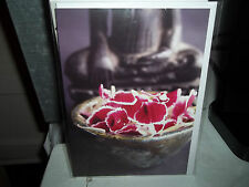 All Occasion Greeting Card New In Plastic Blank Inside The Art Group Red Flowers