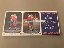 1995-96 LETHBRIDGE HURRICANES WHL TEAM ISSUED SET OF 24 CARDS