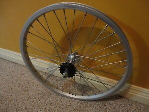 20 Bolt-On 3//8 x 110mm Coaster Brake Silver Sta-Tru Rear Wheel Double-Wall