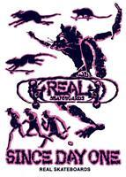 REAL SKATE CO' - Skateboard Sticker - Evolution (Powell Lance Mountain parody)