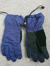 Protest Ski Snow Gloves Purple