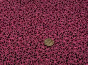 """Purple Small Posies Packed on Black by Legacy Studio*100% Cotton Remnant 21""""x 8"""""""