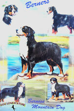 Bernese Mountain Dog Gift Present Wrap