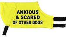 Anxious & Scared Of Other Dogs Greyhound Dog Coat Space Awareness jacket 36