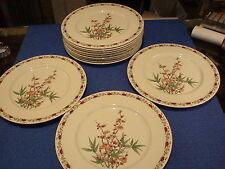 Set Of 12 Vintage Castleton China Dinner Plates