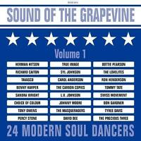 SOUND OF THE GRAPEVINE VOLUME 1 NEW & SEALED MODERN SOUL NORTHERN CD (GRAPEVINE)