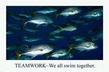 School Of Fish MOTIVATIONAL POSTER 24X36 Teamwork LEADERSHIP achievement