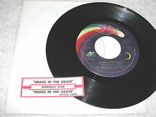 "Midnight Star ""Snake In The Grass"" 2 Versions, 45 RPM, 7"" Single,+Jukebox Strip"