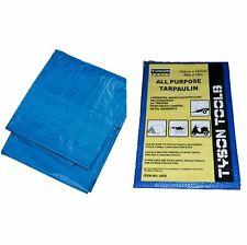 Clear Tarpaulin PVC 2M x 3M Ground Sheet Camping Cover Waterproof Tarp TL025