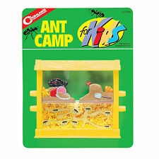 Coghlans 0248, Kids' Ant Camp, Ant Farm