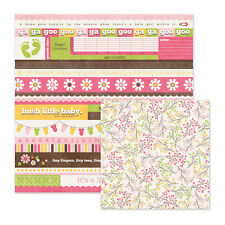 We R Memory GIRL Baby Mine Sugar & Spice Scrapbook Paper 25p 2-side WHOLESALE