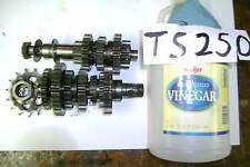 71 72 73 74 75 76 SUZUKI TS250 TS 250 TRANSMISSION GEAR