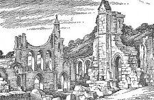B101675 byland abbey   uk