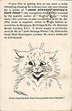 Louis Wain Cat. John Strange Winter's Hair Food Advert.