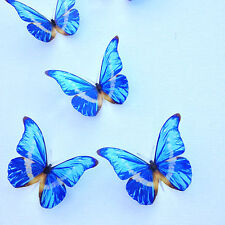 4 Luxury Blue 3D Reproduction Morho Butterflies Picture Frame Home Accessories