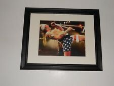 Large Framed Guns 'n Roses Axl Rose 1992 Use Your Illusion Shot Flag Shorts