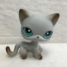 Littlest Pet Shop LPS Figure Toy #391 Green Eye Egyptian Short Hair Cat Rare