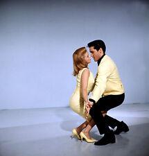 "Elvis Presley / Ann Margret  8x10 FREE US SHIPPING "" Viva Las Vegas """