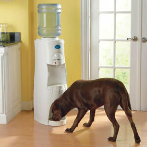 HDUO Family and Pet Water Dispensing System