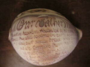A vintage Cowrie shell carved with The Lords Prayer